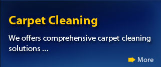 carpet cleaning services norfolk, chesapeake & virginia beach