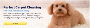 arpet-cleaning